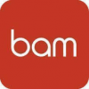 BAM Strategy