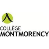 Collège Montmorency