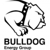 Bulldog Energy Group Ltd.
