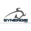 LES PROMOTIONS SYNERGIE INC.