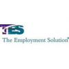 T.E.S. THE EMPLOYMENT SOLUTION